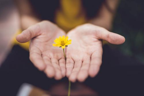loving kindness mindfulness meditation