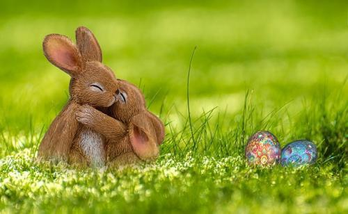 a happy bunny shows strong relationship
